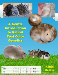 A Gentle Introduction to Rabbit Coat Color Genetics